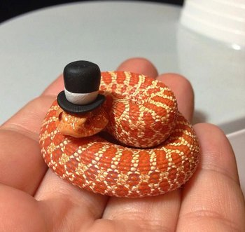 cute-snakes-wear-hats-106__700.jpg